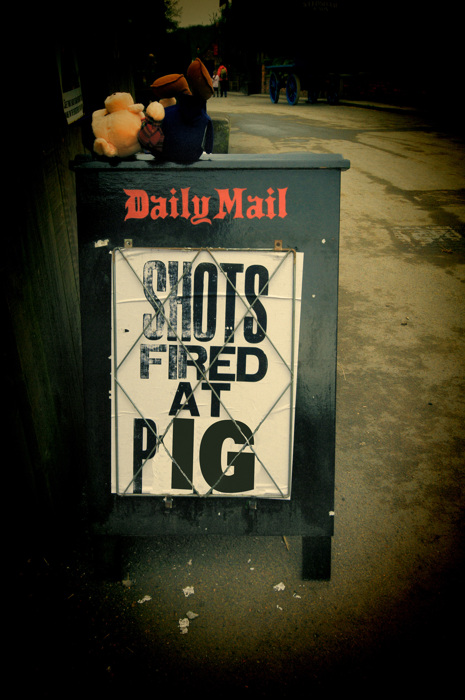photoblog image Mr Pig goes Victorian