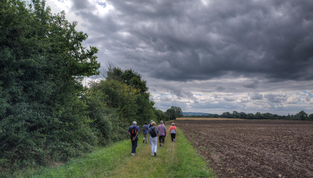 photoblog image A Walk in the worcestershire Countryside 4