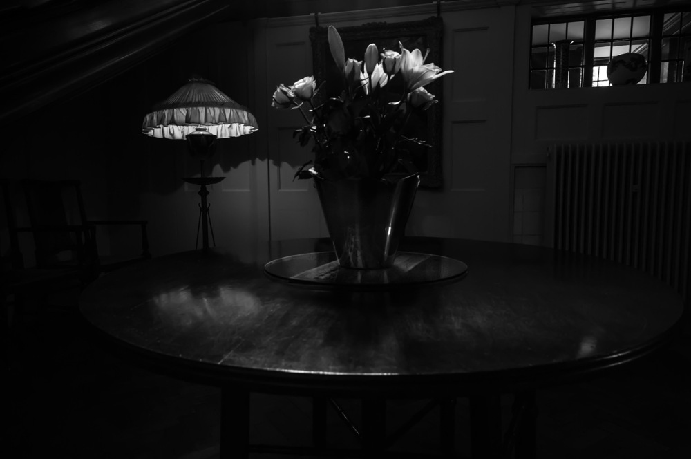 photoblog image Flowers on a table with lamp
