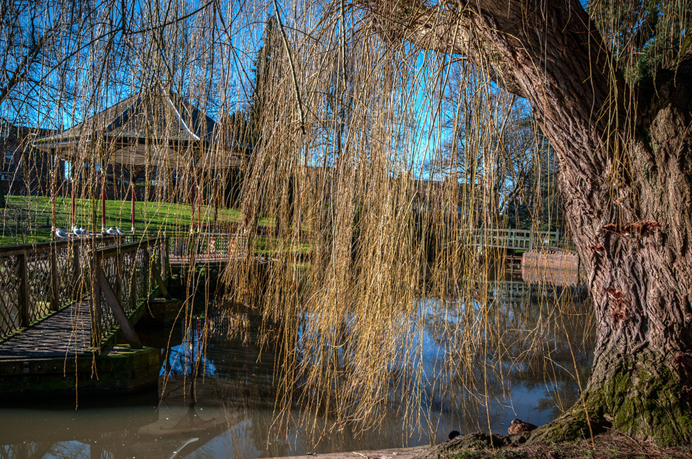 photoblog image Gheluvelt Park in February 5of 5