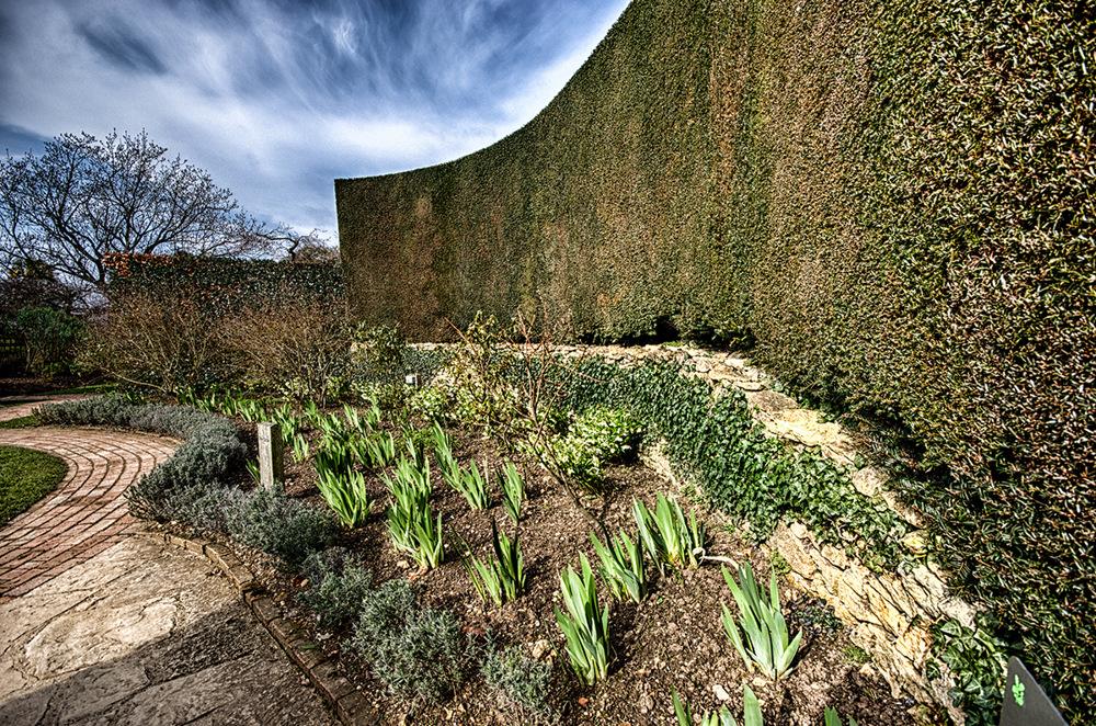 photoblog image Hidcote Gardens