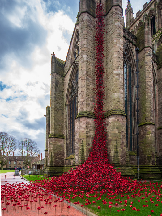 photoblog image Weeping Window