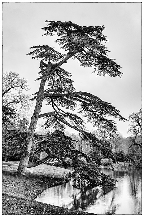 photoblog image Croome in winter 2