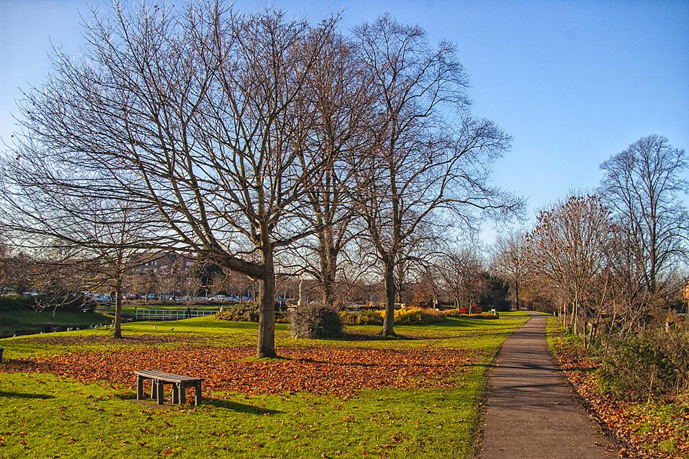 photoblog image Vines Park